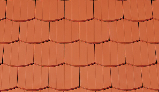 PROFIL Sächsische Biber 15,5x38x1,2